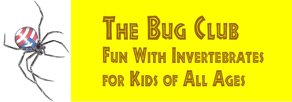 Bug Club Header